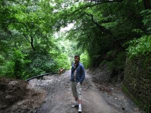 Starea drumului spre Cetatea Neamțului